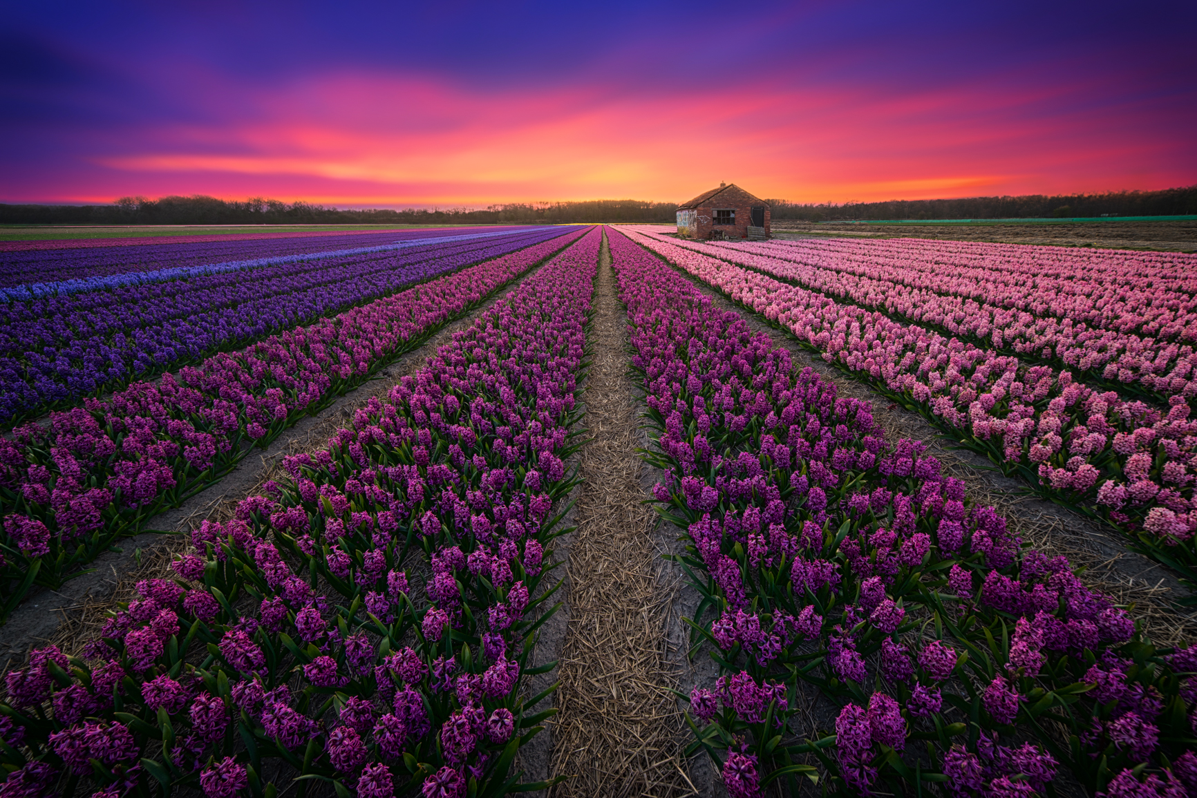 30+ Reasons Why The Netherlands Is A Beautiful Country